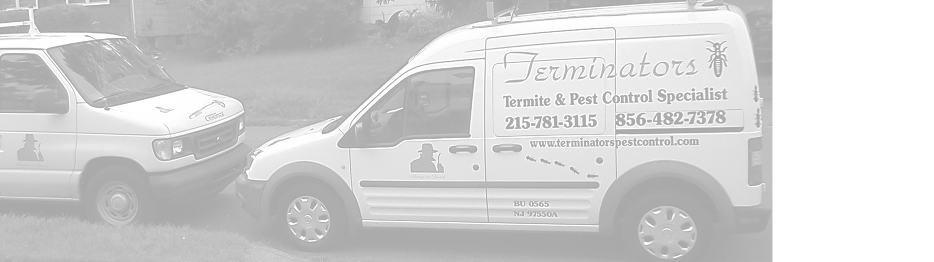 Terminators Pest Control at work